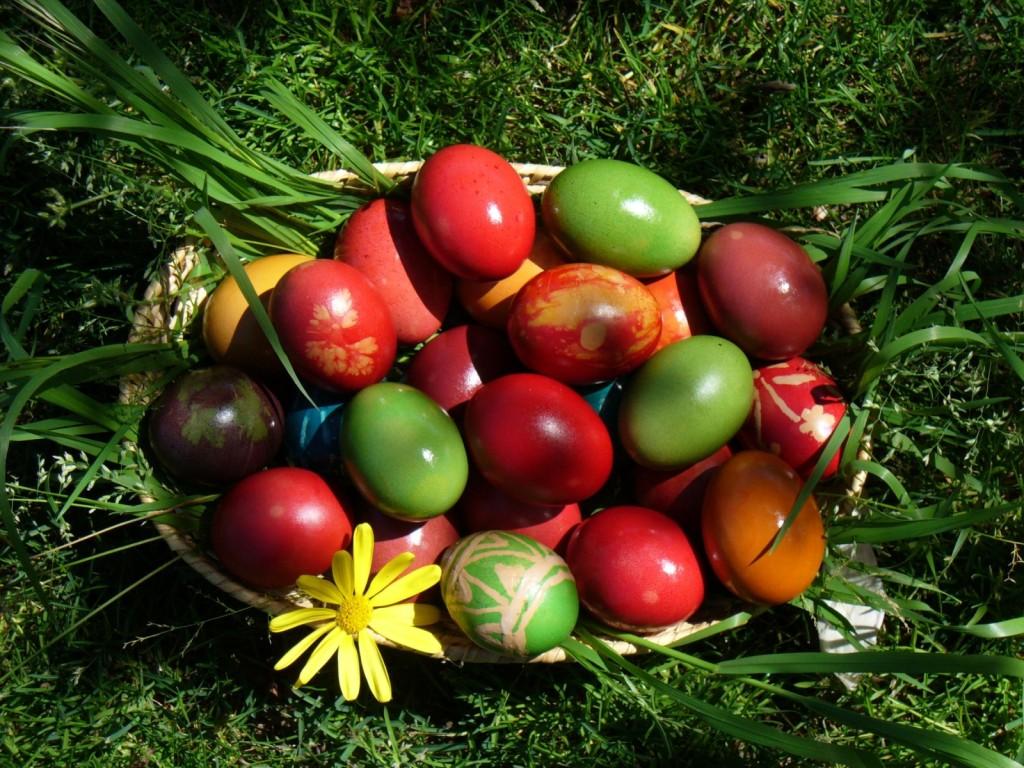 Фото перевязать яйца 25 фотография