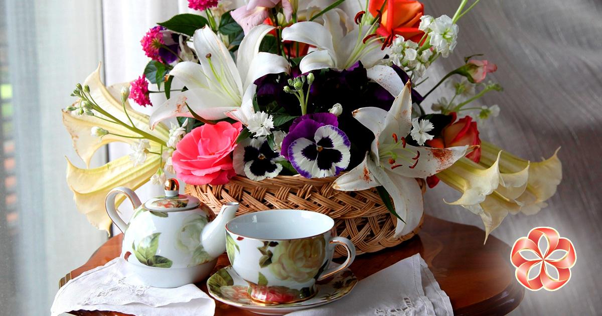 Какие цветы послать на Кипр: извинительные орхидеи.